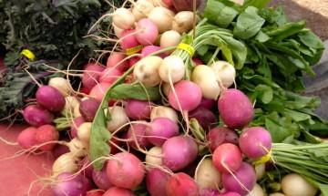 Grants Pass Grower's Market ©EverydayCookingAdventures